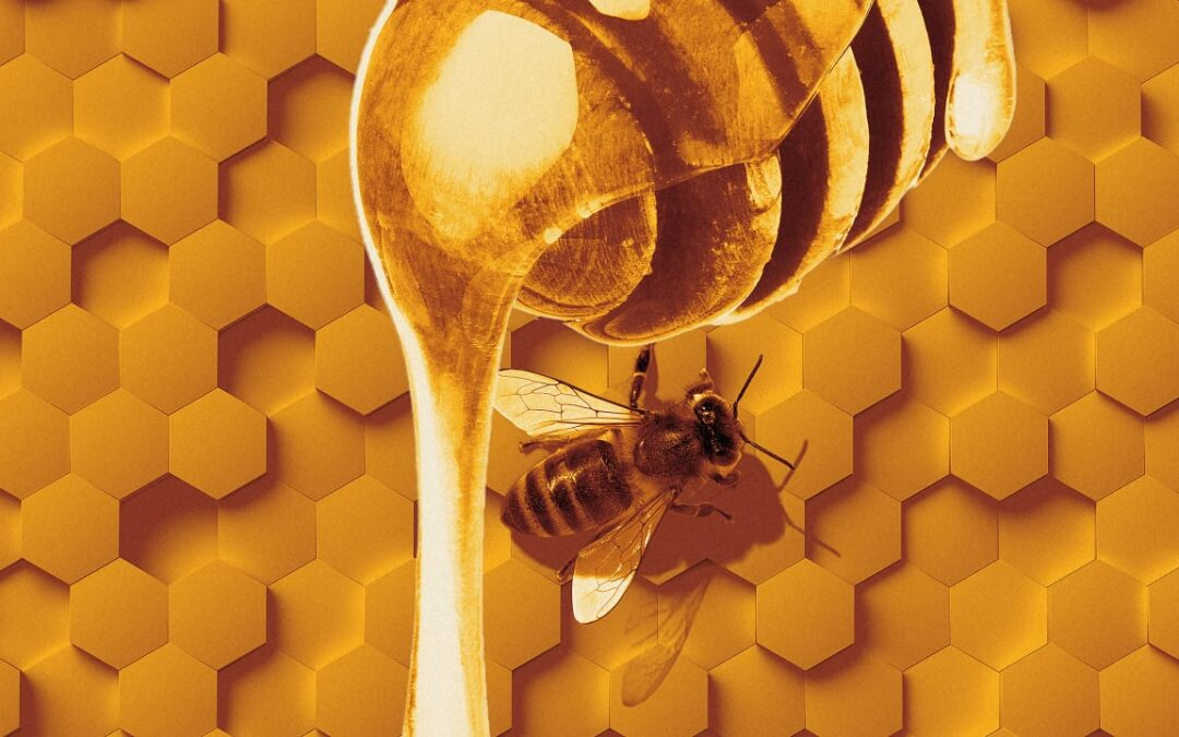 How to Register Honey Products before Importing to the UAE
